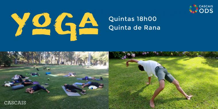 Aulas de Yoga e Meditação